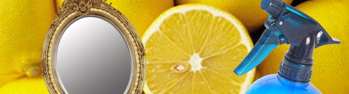 citroen spiegelreiniger