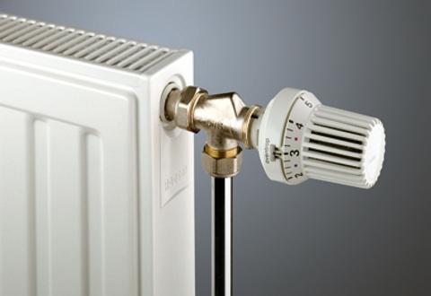 Radson Compact paneelradiator 600x2250x172mm (H x L x D) - type 33