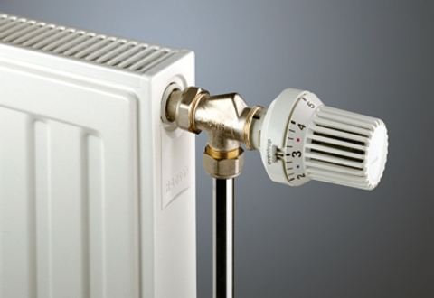 Radson Compact paneelradiator 500x2400x172mm (H x L x D) - type 33