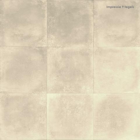 Jabo Limburg tegel 58,5 x 58,5 cm beige (5 stuks)
