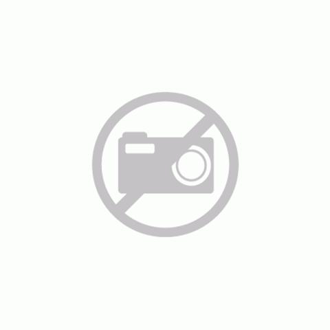 Hotbath Cobber CB018 bidetmengkraan zonder waste gepolijst messing