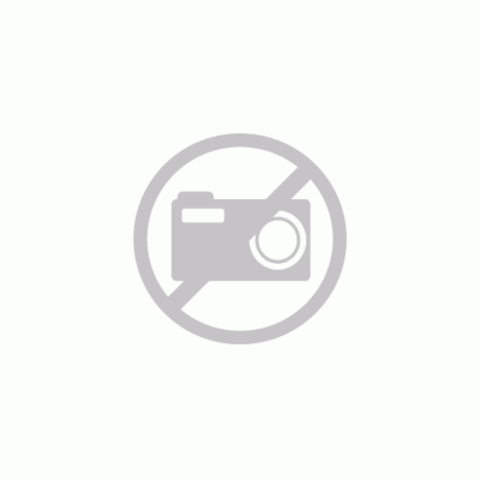 Hotbath Cobber CBA11 WC-borstelgarnituur wandmodel geborsteld messing PVD