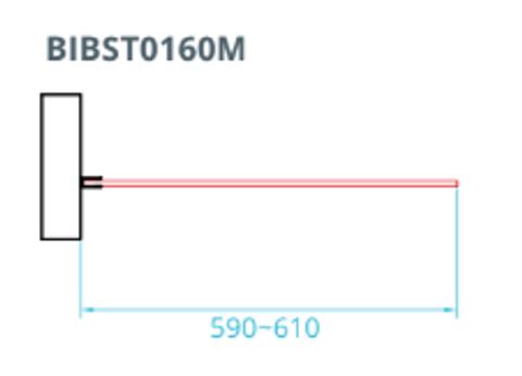 Bewonen Wilco inloopdouche met matglazen band 60cm met verchroomd beslag - zonder stabilisatiestang