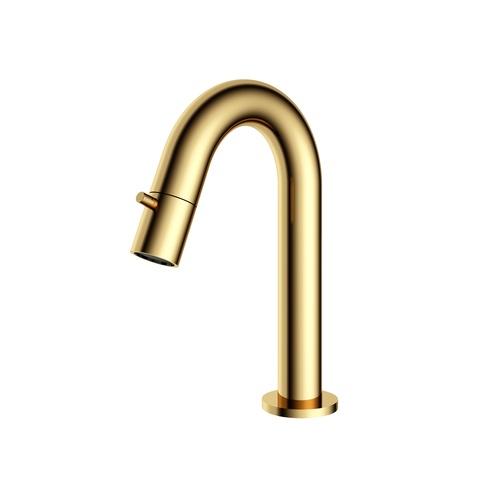Hotbath Cobber U001 fonteinkraan gepolijst messing PVD