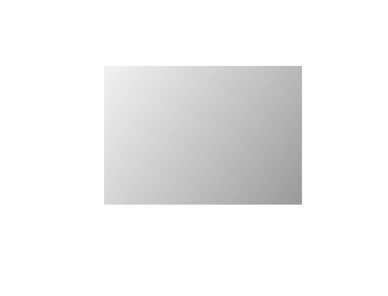 Proline Basic spiegel rechthoek op alu frame 120cm - xmm (bxd)