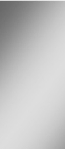 Blinq Gefion fonteinspiegel 30x60 met verdekte bevestigingsset