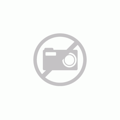 Wiesbaden Caral wastafelkraan draaibare hoge uitloop chroom