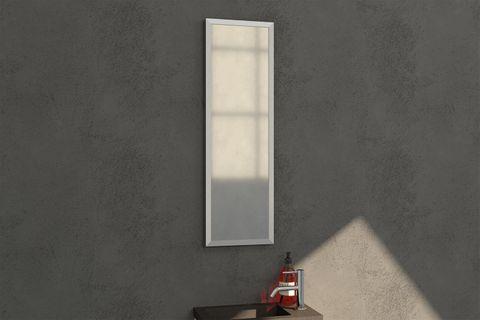 Bewonen Silhouette spiegel met aluminium frame geborsteld 25x80 cm