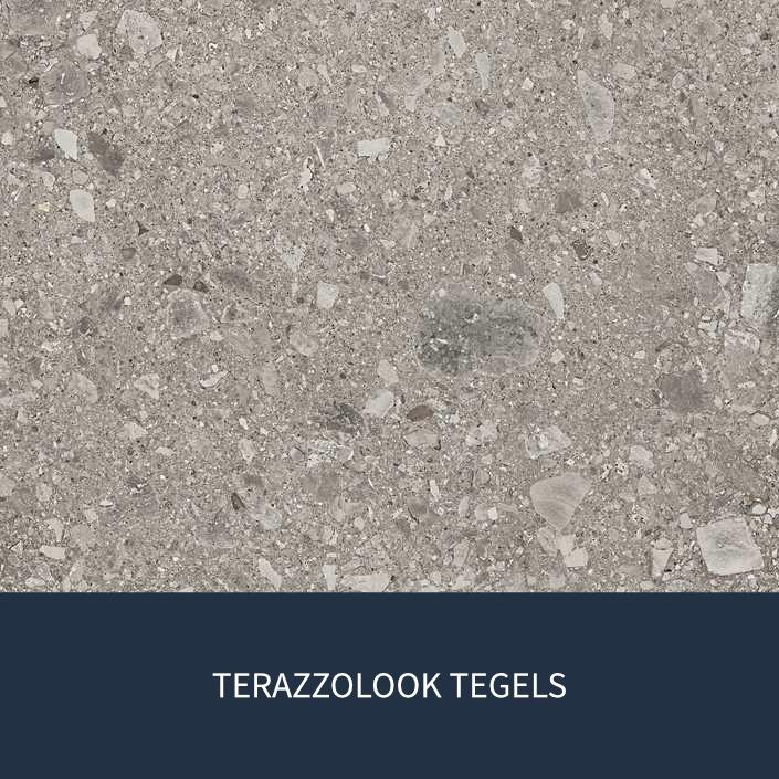 TERAZZOLOOK TEGELS.jpg
